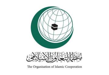 """""""التعاون الإسلامي"""" تدين الهجوم الإرهابي على جازان بصاروخ باليستي"""