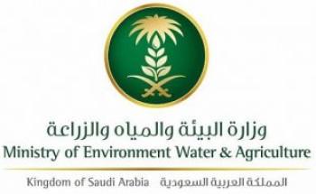 وظائف إدارية شاغرة بوزارة البيئة والمياه والزراعة