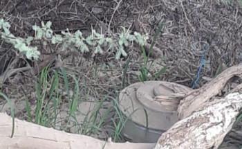 الدفاع المدني بمنطقة جازان يبطل مفعول لغمٍ أرضي بأحد الأودية جرفته السيول المنقولة من الأراضي اليمنية