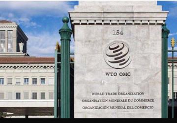 """""""التجارة العالمية"""": تراجع التجارة في العالم بنسبة 18% في الربع الثاني من 2020"""