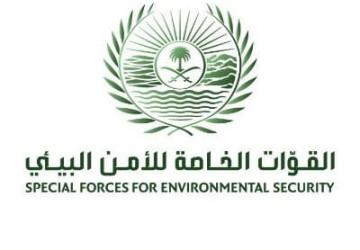 متحدث القوات الخاصة للأمن البيئي: تحديد هوية الأشخاص الذين قاموا بإيذاء سلاحف على أحد شواطئ محافظة أملج بتبوك